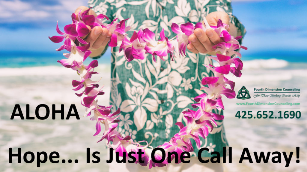 Hawaii sex and Pornography addiction treatment counseling therapy Hilo Hawaii